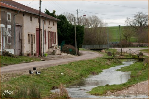 Aisne1601 0057c jl