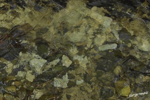 Argile de gault 2021 05 24 2