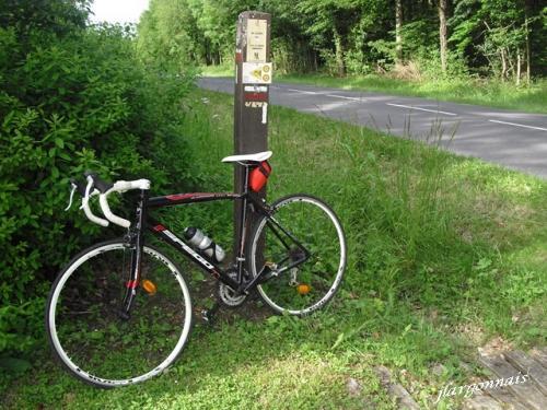Cyclo la pedale chalonnaise 2018 10
