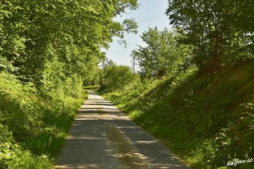Foret rarecourt beaulieu en argonne 2020 05 9