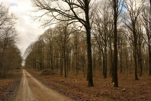 Route des grands plains 5