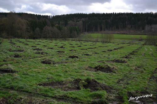 Vallee de la biesme plantation 2015 11 01
